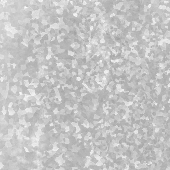 Swim w/ Dolphins & Sea Lions in Puerto Vallarta   Vallarta